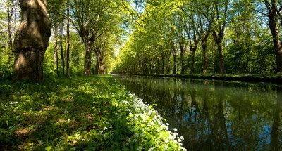 Canal Rhone au Rhin, near Strasbourg