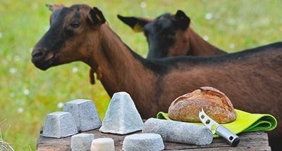 Goats and Cheese